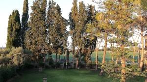 caseggiato rurale in vendita siracusa